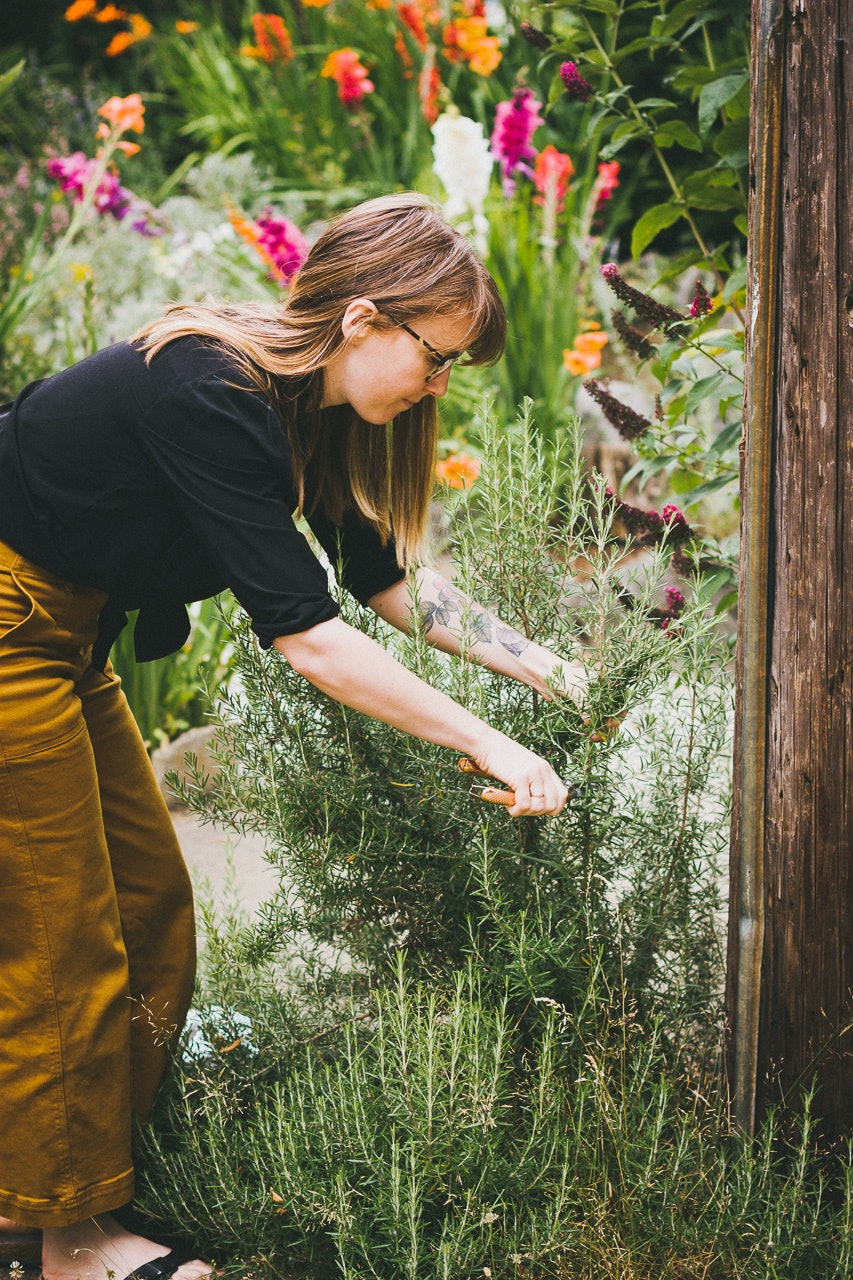 Urban Foraging by Conscious by Chloé