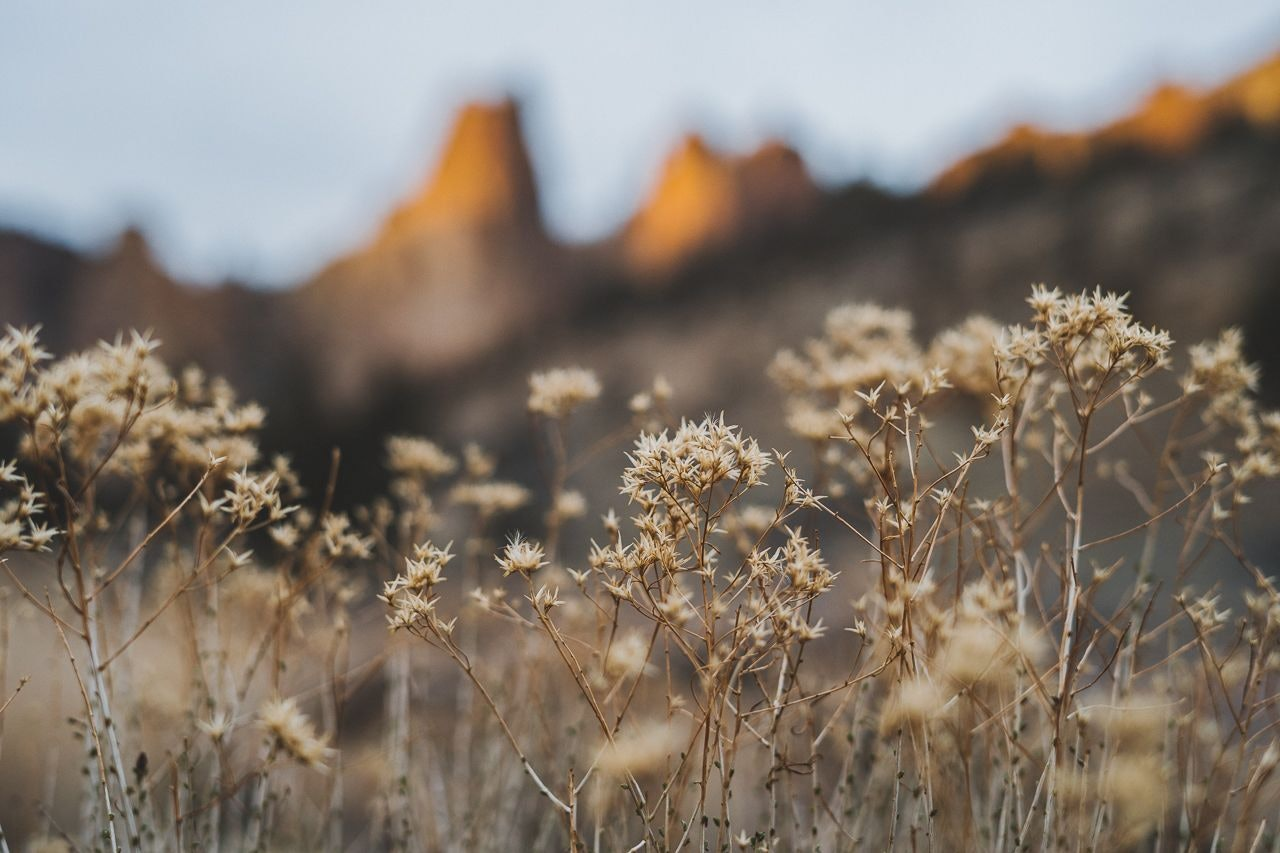 Smith Rock State Park Oregon Hike Buy Nothing Challenge Shopping Ban by Conscious by Chloé